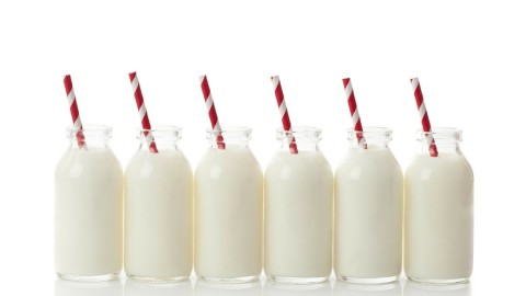 Dairy: Good or Bad?